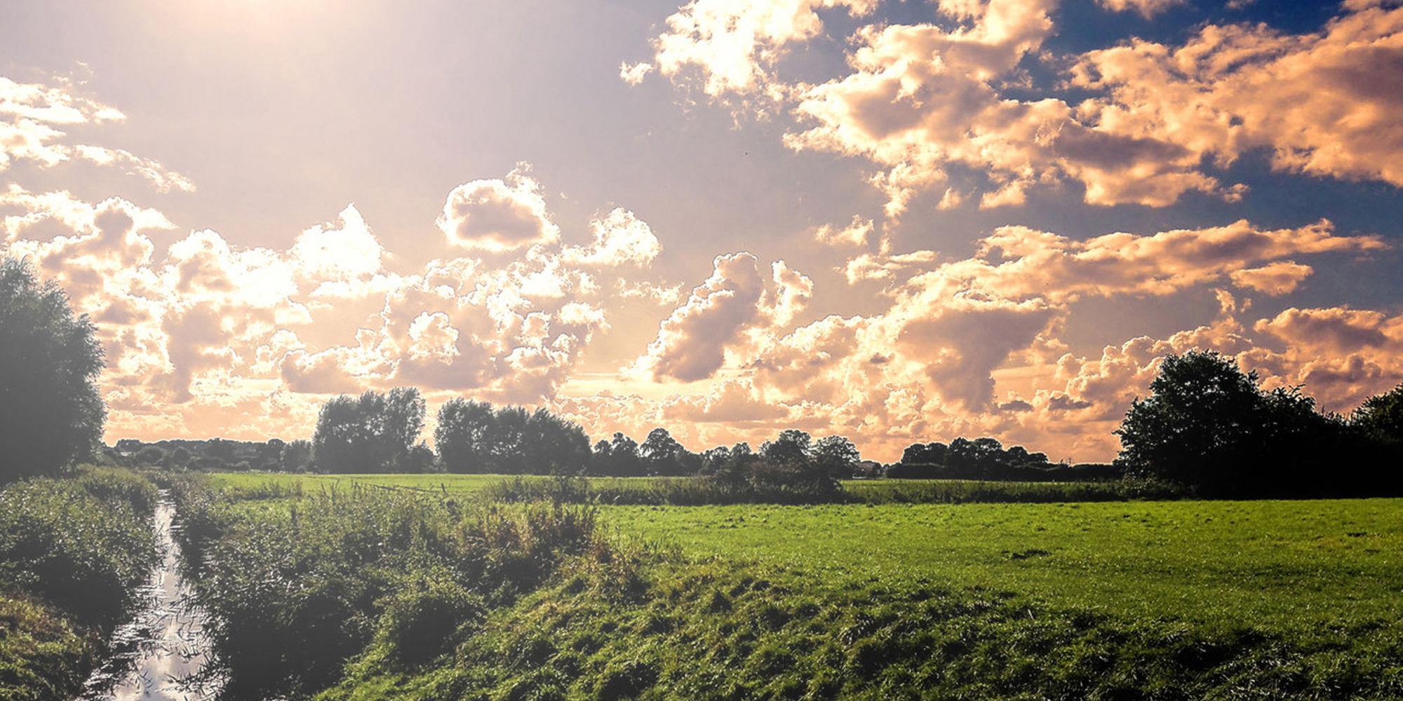 Shades Of Holland